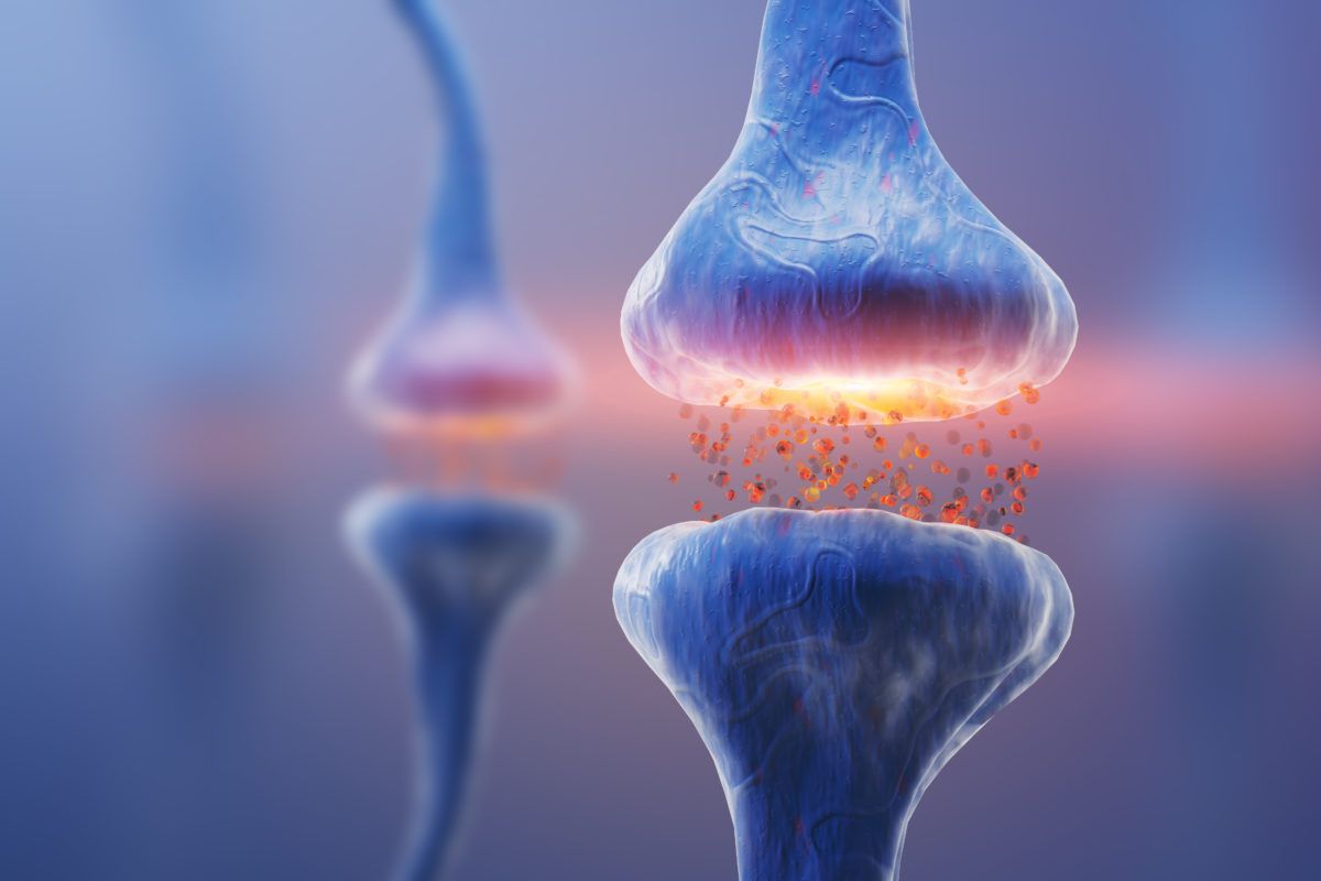 neurotransmitter, biogene amine, membraPure